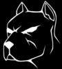SkyTon avatar