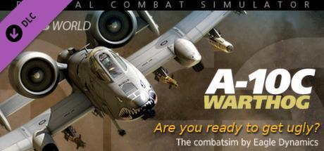 DCS A-10C Warthog