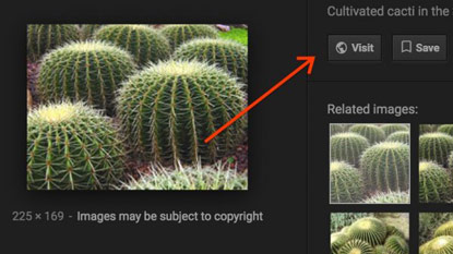 """A Google eltüntette a """"kép megtekintése"""" gombot"""