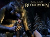 TES 3: Bloodmoon magyarítás cover