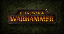 First screenshots of Total War: Warhammer arrived! cover
